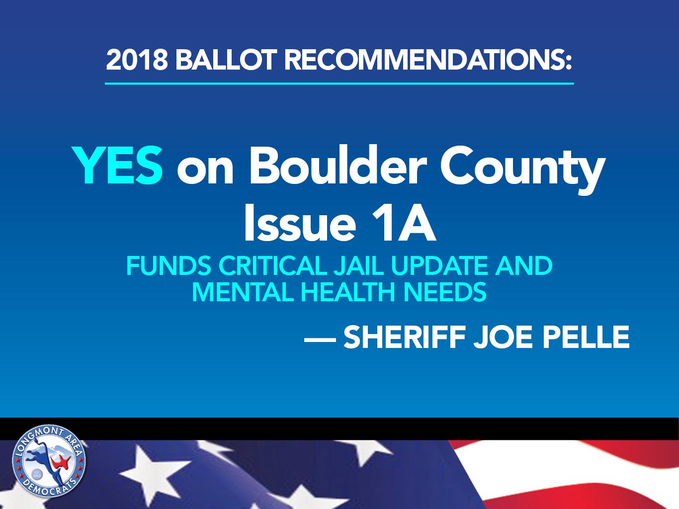 2018 Democratic Candidates Ballot Issues Including Judges